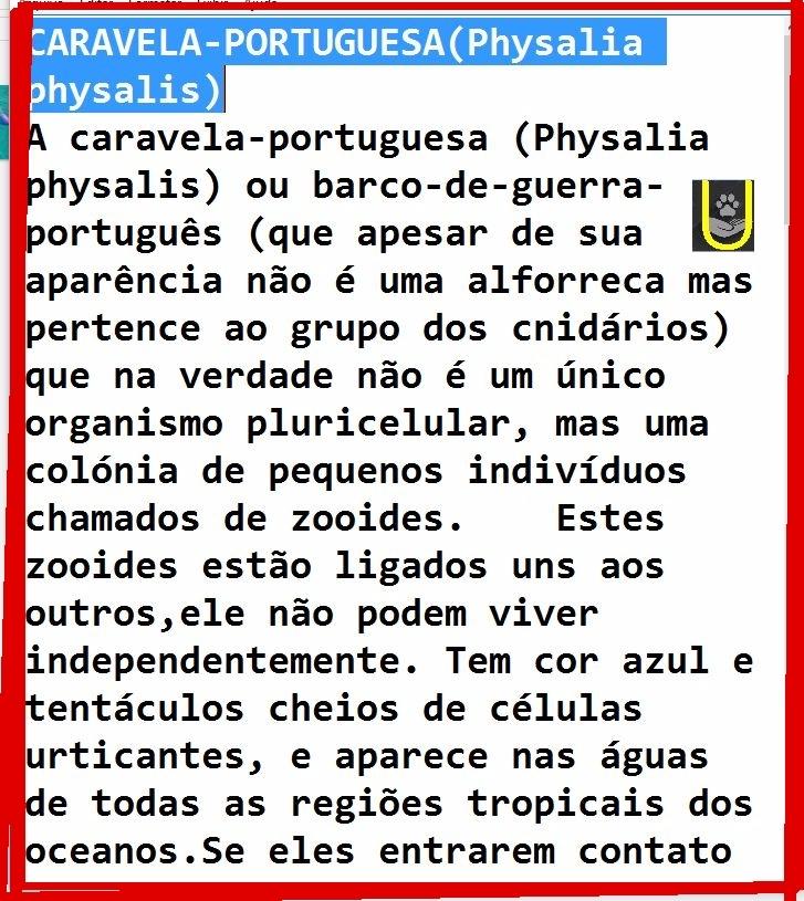 1024px-Physalia_physalis_2A